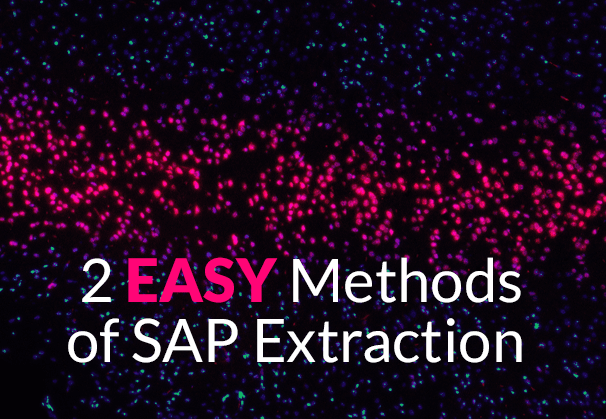 SAP extraction in BW with ODP and SAP OData